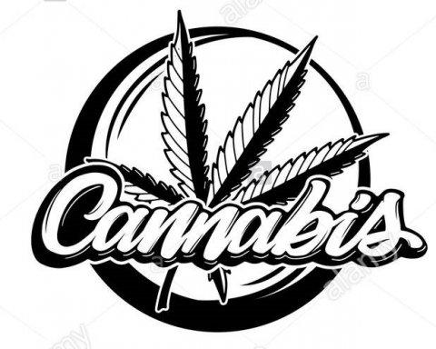 Mega Cannabis Shop